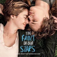 Soundtrack: The Fault In Our Stars (2xVinyl)